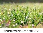 green grass background  ... | Shutterstock . vector #744781012