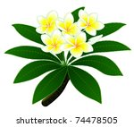 branch of a tropical tree... | Shutterstock .eps vector #74478505