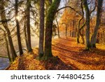 colorful autumn in the park....   Shutterstock . vector #744804256