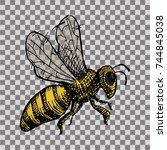 wasp  bee  hornet illustration. ... | Shutterstock .eps vector #744845038
