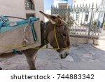 donkey taxi in santorini ...   Shutterstock . vector #744883342