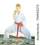 active little boy doing karate... | Shutterstock . vector #744935272