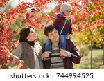 a young family walks in the... | Shutterstock . vector #744994525
