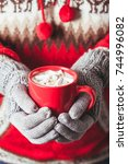 cocoa with marshmallow | Shutterstock . vector #744996082