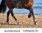 Small photo of Detail of a horse trainig at canter on the beach