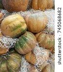 many pumpkins on a farmers... | Shutterstock . vector #745068682