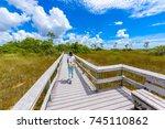 mahogany hammock trail of the... | Shutterstock . vector #745110862