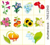 flowers. vector set | Shutterstock .eps vector #74512543