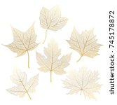 set gold  autumn leaves maple... | Shutterstock .eps vector #745178872