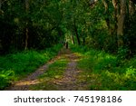 beautiful view of a clay path... | Shutterstock . vector #745198186