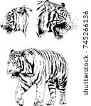 set of vector drawings on the... | Shutterstock .eps vector #745266136
