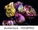 wilting flowers  drying roses | Shutterstock . vector #745289902