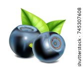 blueberries with leaves. vector ...   Shutterstock .eps vector #745307608