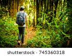 man traveler traveling walking... | Shutterstock . vector #745360318