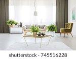 fern on a table in...   Shutterstock . vector #745516228