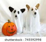 ghost corgis  | Shutterstock . vector #745592998
