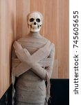 halloween skeleton decoration | Shutterstock . vector #745605655