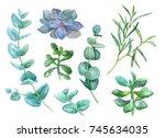 watercolor hand drawn... | Shutterstock . vector #745634035