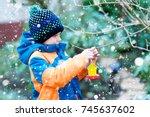 little kid boy feeding birds in ... | Shutterstock . vector #745637602