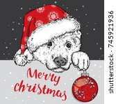 a beautiful dog in a christmas... | Shutterstock .eps vector #745921936