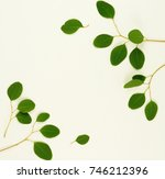 green eucalyptus branches on a... | Shutterstock . vector #746212396
