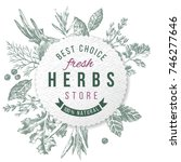 hand drawn herbs and spices... | Shutterstock .eps vector #746277646