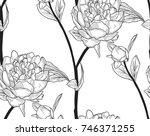 vector black decorative...   Shutterstock .eps vector #746371255