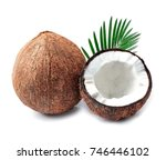 coconuts with leaves on a white ... | Shutterstock . vector #746446102