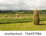 field. carpathians. copy of the ... | Shutterstock . vector #746457586