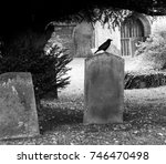 Small photo of crow sat on tombstone in graveyard with church door in background