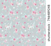 fashionable pattern in small... | Shutterstock . vector #746489248