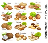 set nuts food grains  of cashew ... | Shutterstock .eps vector #746497606