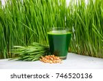 wheatgrass shot. juice from... | Shutterstock . vector #746520136