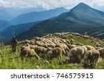 sheep herd on a green pasture... | Shutterstock . vector #746575915