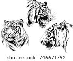 set of vector drawings on the... | Shutterstock .eps vector #746671792