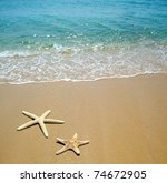 starfish on a beach sand | Shutterstock . vector #74672905