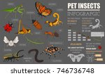 pet insects breeds icon set... | Shutterstock .eps vector #746736748