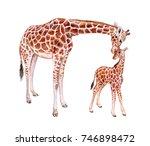 giraffes. mum with baby... | Shutterstock . vector #746898472