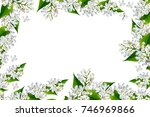 flower lilac isolated on white... | Shutterstock . vector #746969866