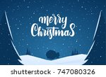 vector illustration  winter... | Shutterstock .eps vector #747080326