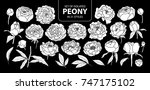 set of isolated white... | Shutterstock .eps vector #747175102