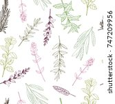 vector seamless pattern. with... | Shutterstock .eps vector #747209956
