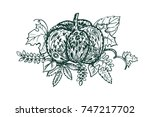 stylized pumpkin and leaves... | Shutterstock .eps vector #747217702