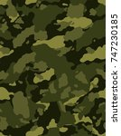 camouflage pattern background... | Shutterstock .eps vector #747230185