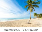 paradise beach also called... | Shutterstock . vector #747316882