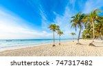 paradise beach also called... | Shutterstock . vector #747317482