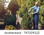 senior gardener cutting a tree... | Shutterstock . vector #747329122