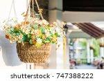 hanging flower pot   vintage... | Shutterstock . vector #747388222