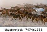 kayseri  turkey  august 2017 ...   Shutterstock . vector #747461338
