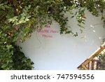 walk way   tehran nature    Shutterstock . vector #747594556
